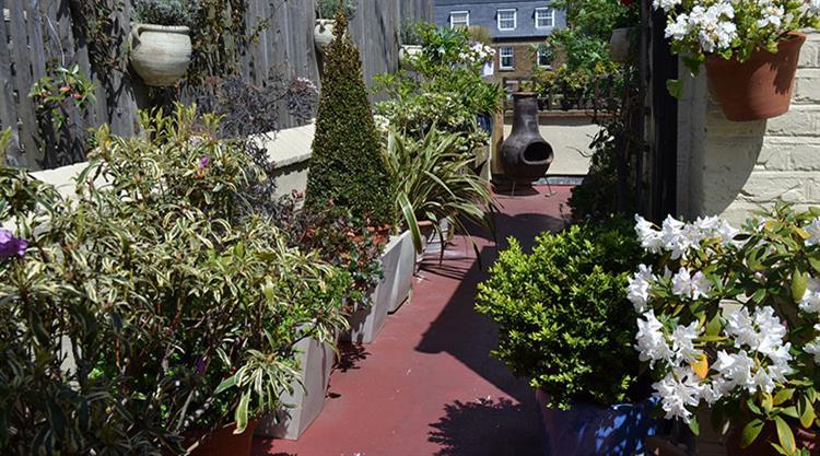 Urban Garden Roof Terrace