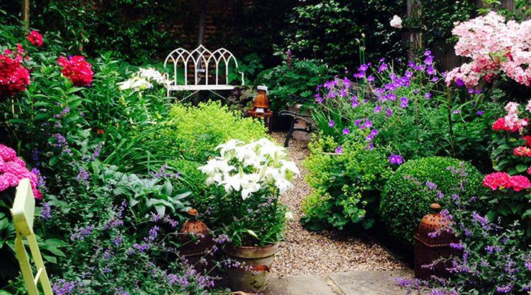 Urban Garden Clapham
