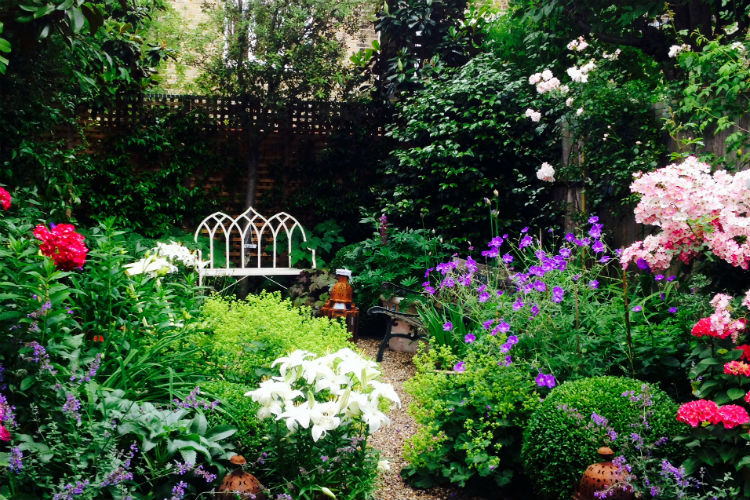 Urban Garden Highlight – Clapham