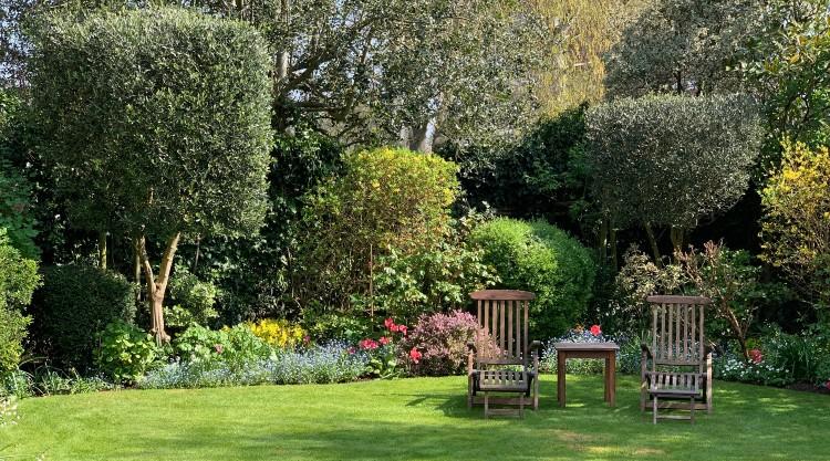 Urban Garden Maintenance – Private Gardens